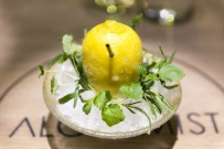 Lemon_cocktail.jpg