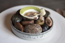 Mahogany_clam.jpg