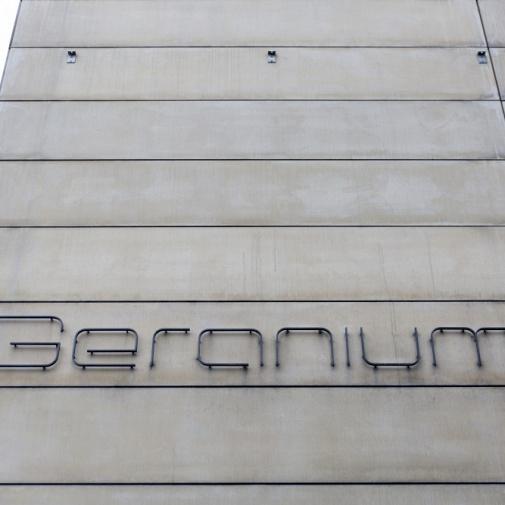 Geranium, Copenhagen
