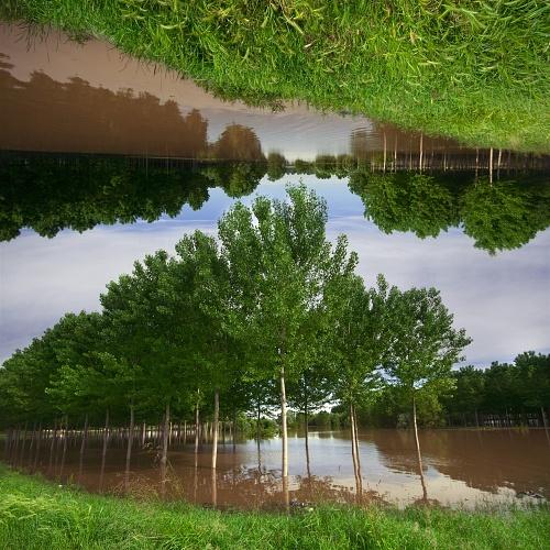 Sovversione della natura - 2013